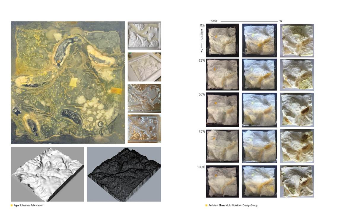 Research_08_Contingent Landscapes_073-074